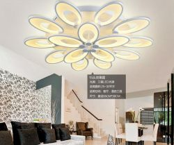 Flower shape acrylic LED ceiling light